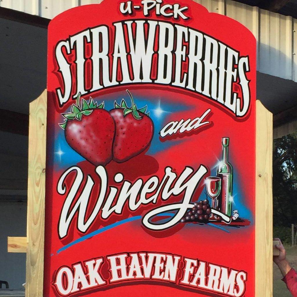 Oak Haven Farm & Strawberry U-Pick.jpg