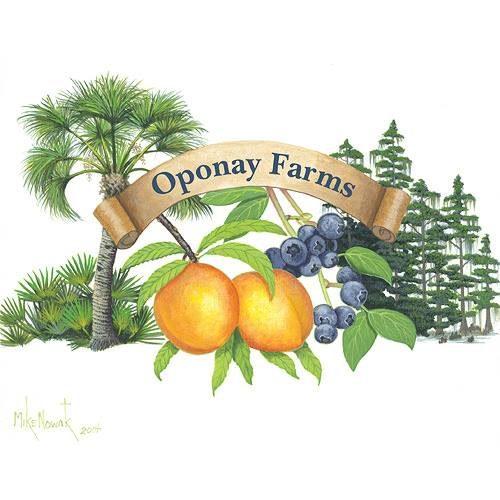 Oponay Farms.jpg