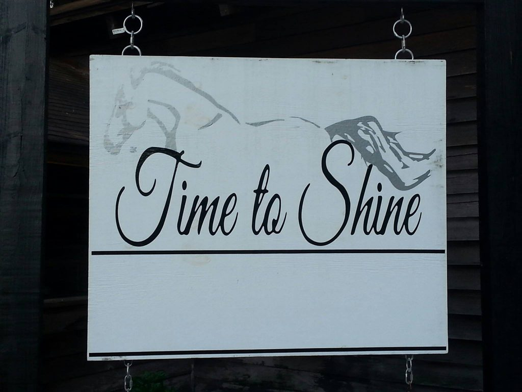 Time to Shine Equestrian Center.jpg