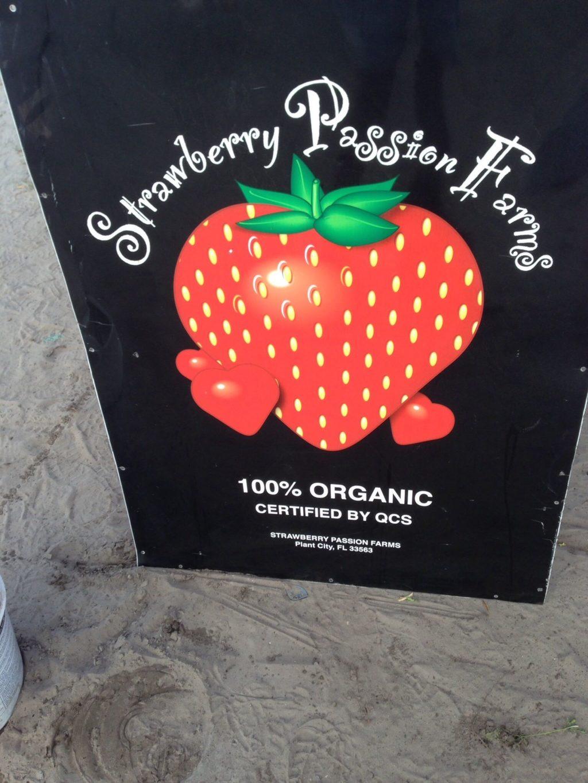 Strawberry Passion.jpg