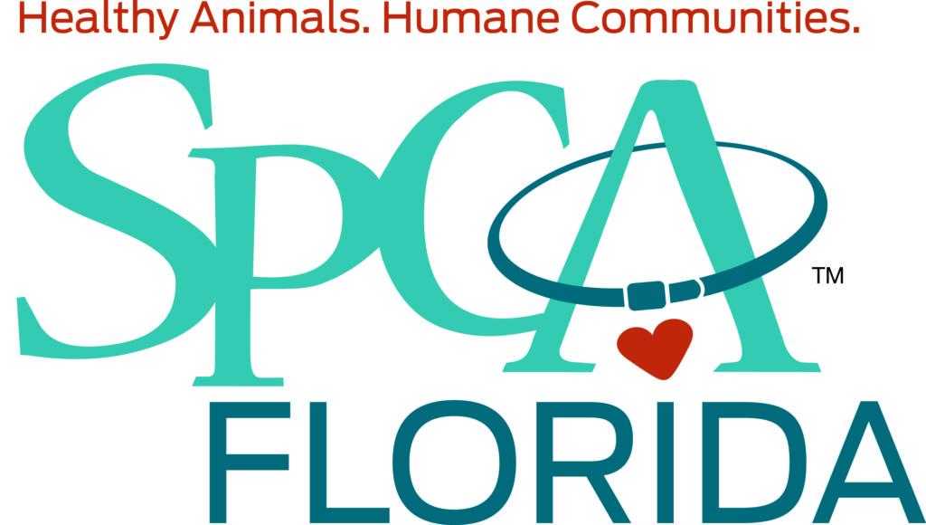 SPCA Florida.jpg