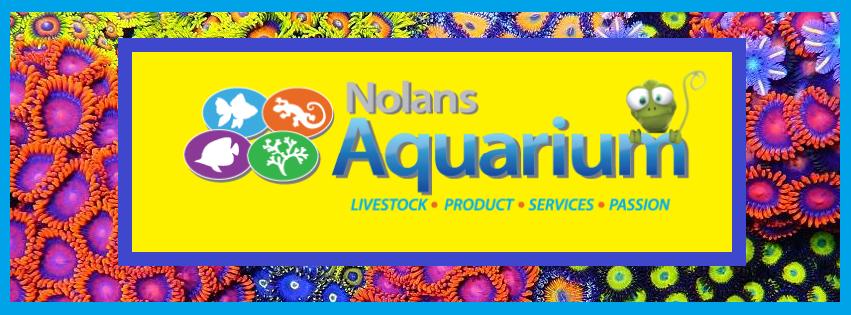 Nolan's Aquarium.png