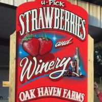 Oak Haven Farm & Strawberry U-Pick.jpg
