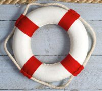 life preserver from website.JPG
