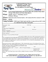 2018 Lakeland Flying Tigers Baseball Camp Flier-page-001.jpg