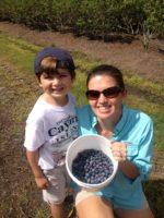 Kirkland Farms Blueberries.JPG