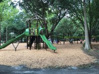 Rotary Playground Lake Parker Lakeland Treehouse.jpg
