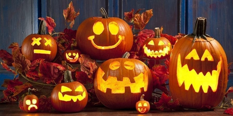 Lakeland Fall & Halloween Guide: Pumpkin Patches, Corn Mazes ...