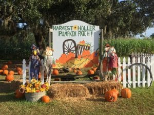 Harvest Holler photo ops