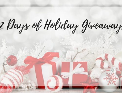 Lakeland Mom's 3rd Annual 12 Days of Holiday Giveaways
