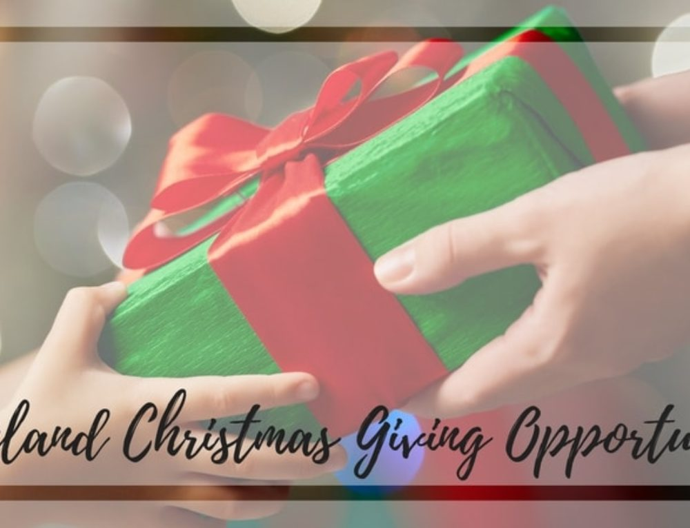 Christmas Giving Opportunities & Toy Donation Needs in the Lakeland Area