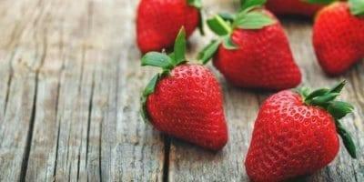 upick strawberries lakeland