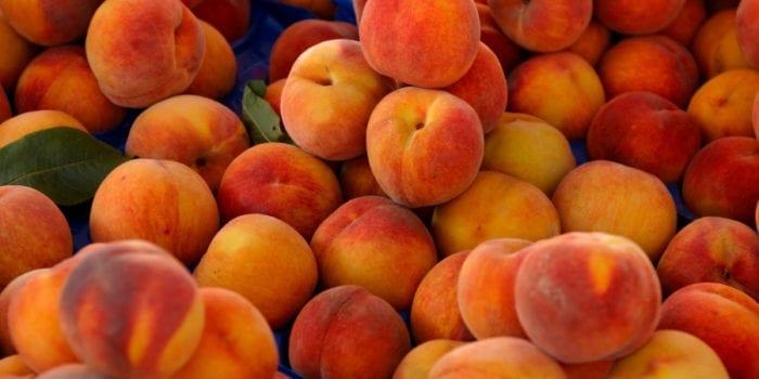 U Pick Peaches