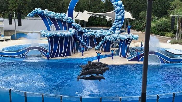 SeaWorld Florida dolphin show
