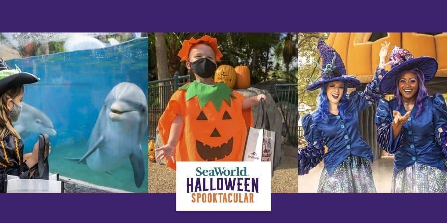 SeaWorld Orlando Halloween