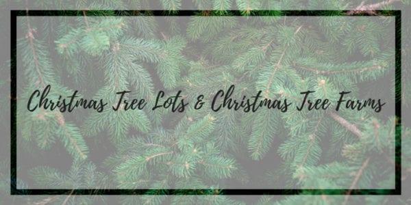 Christmas Tree Lots Live Trees Lakeland Florida