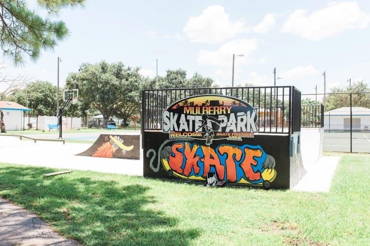 Muberry Skate Park