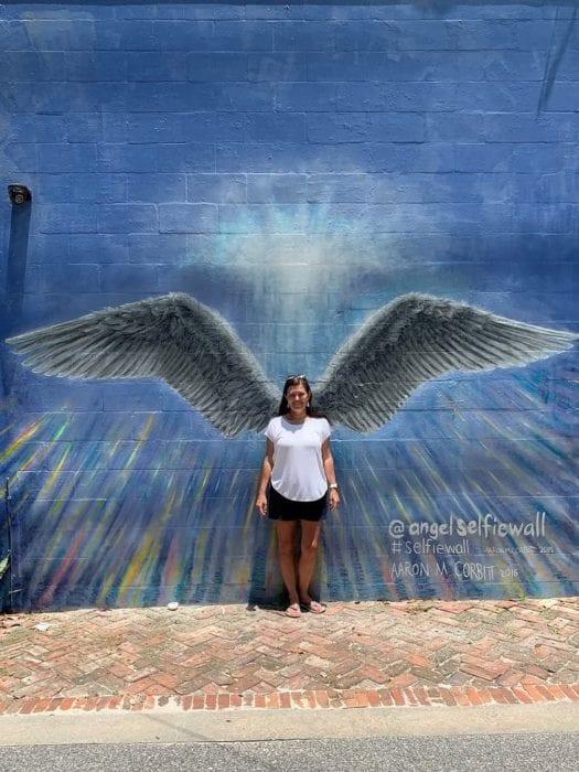 Lakeland Murals Angel Wings Wall Dixieland
