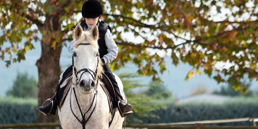 Horseback Riding Lessons Lakeland FL