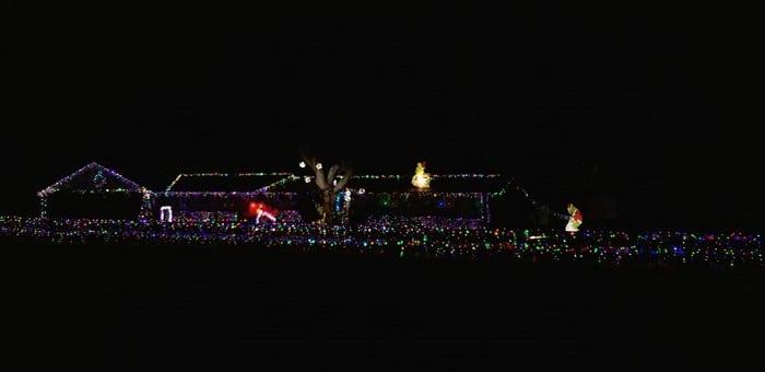 Grinch-Christmas-Lights-Lakeland-Florida